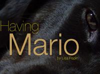 Having Mario