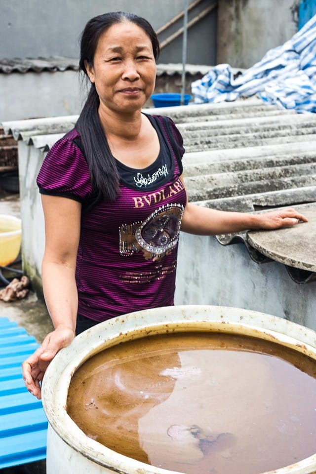When Everyone In the Village Makes Fish Sauce: A Profile of Sa Chau, Vietnam